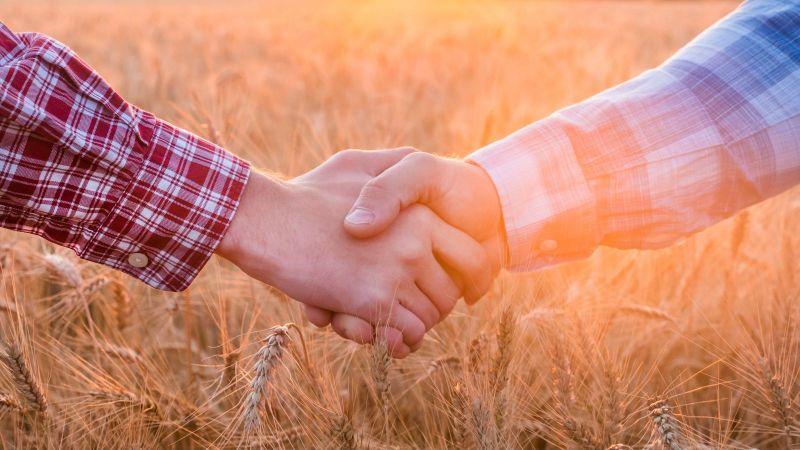 Vor dem Hintergrund eines goldbraunen Kornfeldes schütteln sich zwei Männer die Hände.