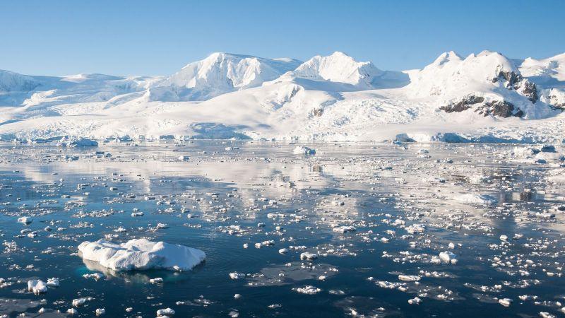 Eisschollen treiben auf einem ruhigen Meer.
