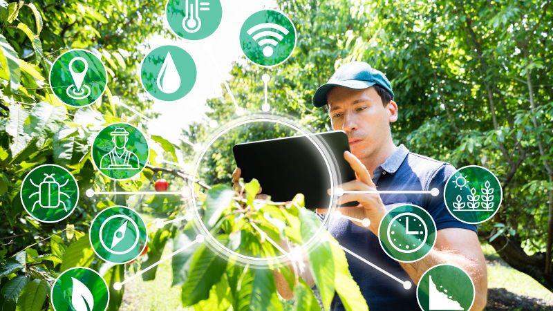 Ein Mann steht zwischen zwei Obstbäumen. Er betrachtet das Tablet in seinen Händen. In einer vorgelagerten Ebene sind verteilt unterschiedliche Piktogramme abgebildet.