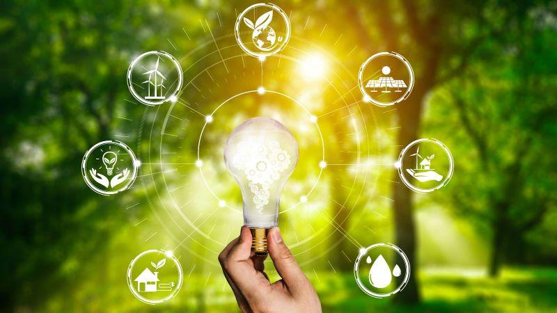 Eine Hand hält eine Glühbirne. Um die Glühbinre sind Graphiken angeordnet. Im Hintergrund zeichnet sich ein Wald mit durchscheinenden Sonnenstrahlen ab.