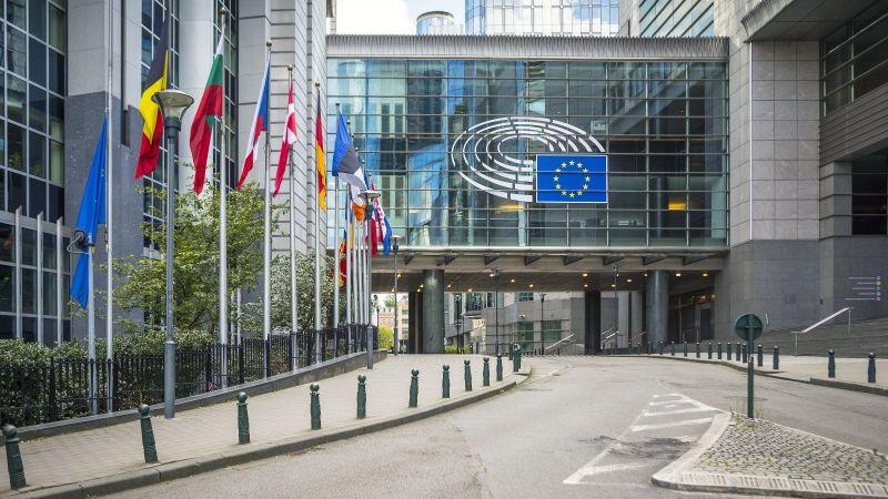 Gezeigt ist ein Stück Weg und das EU Parlementsgebäude mit wehenden Flaggen verschiedener Mitgliedsländer.