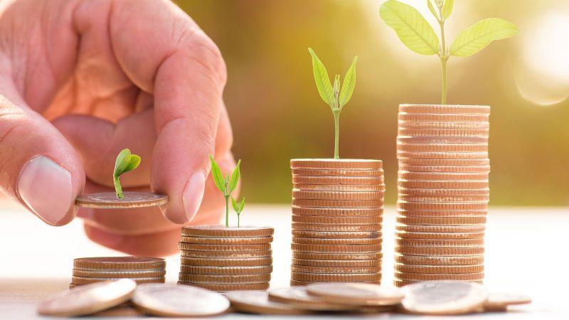 Vier Stapel Münzen mit Pflanzen darauf werden von einer Hand aufgebaut.