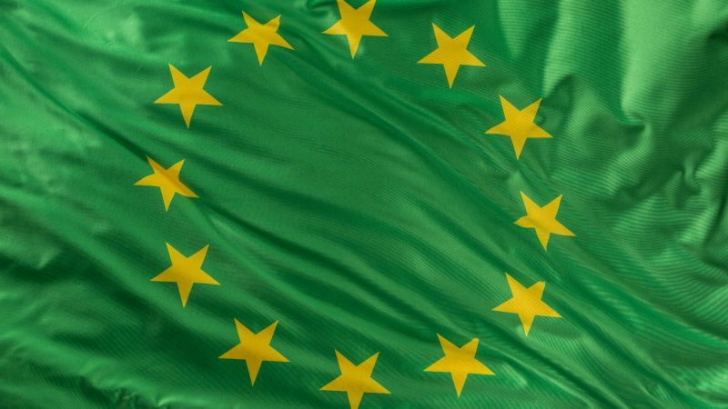 Eine grüne Europaflagge.