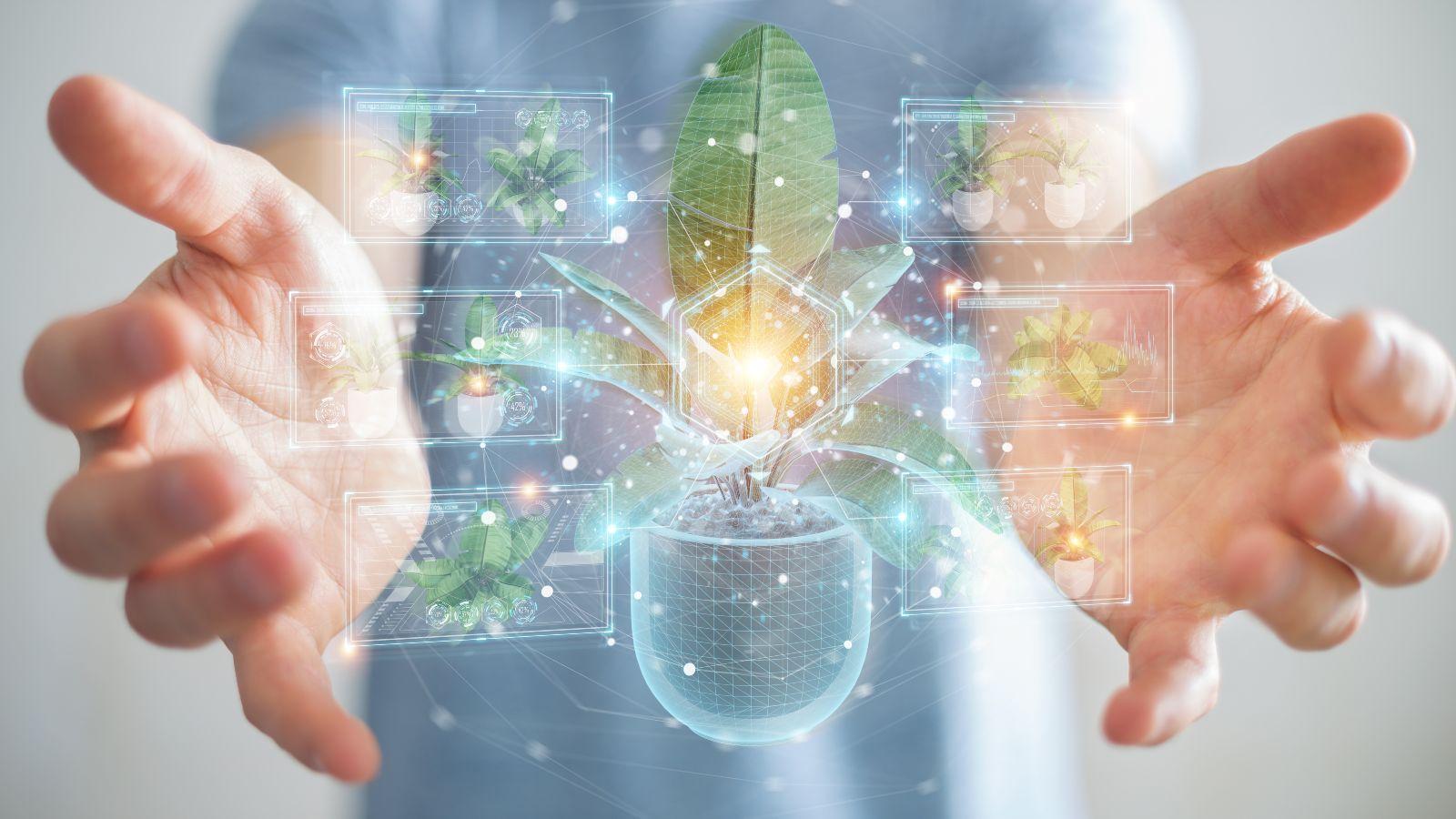Zwischen den ausgestreckten Händen eines Mannes schwebt die digitale Illustration einer Topfpflanze in leuchtenden Linien.