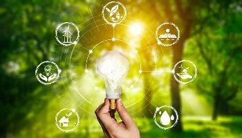 Eine Hand hält eine Glühbirne. Um die Glühbirne sind Grafiken angeordnet. Im Hintergrund zeichnet sich ein Wald mit durchscheinenden Sonnenstrahlen ab.