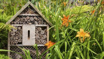 Ein hölzernes Insektenhotel steht in einer Blumenwiese mit Lilien.