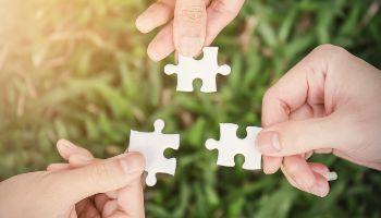 Drei Hände halten je ein Puzzleteil über einen grünen Wiese.