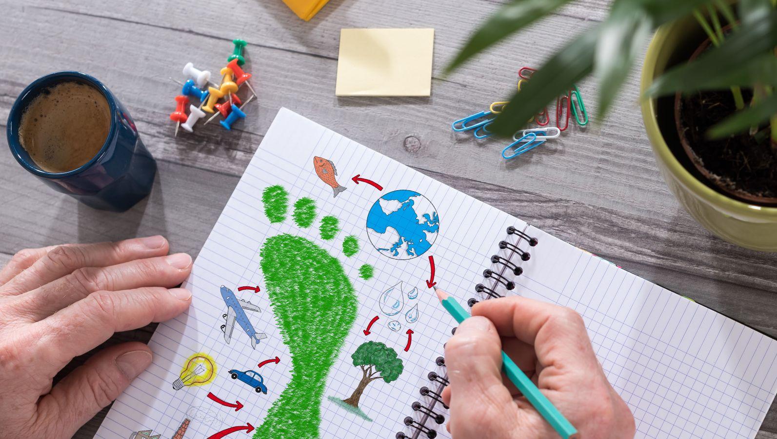 Eine Person hält ein aufgeschlagenes Notizbuch und einen Stift auf einem Schreibtisch mit diversen Schreibutensilien. Auf der Seite des Notizbuchs sind Zeichnungen passend zum Thema Bioökonomie und Umwelt, z.B. ein grüner Fußabdruck.