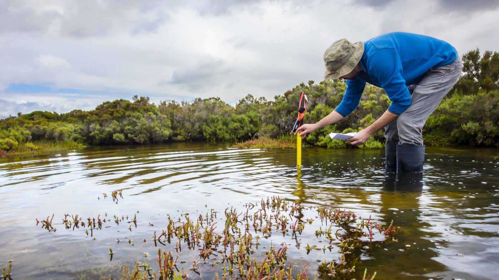 Ein Mann steht mit Gummistiefeln knöcheltief im flachen Wasser und hält ein Messgerät ins Wasser. Er trägt einen Fischerhut.