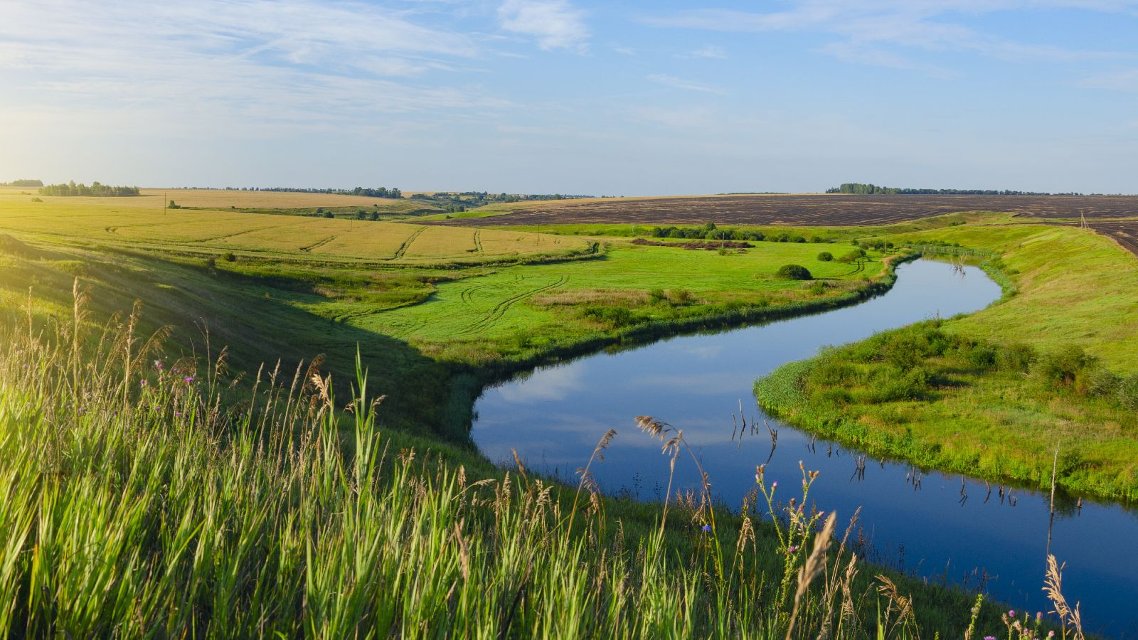 Ein Fluss schlängelt sich durch eine grüne hügelige Landschaft bei tiefstehender Sonne.