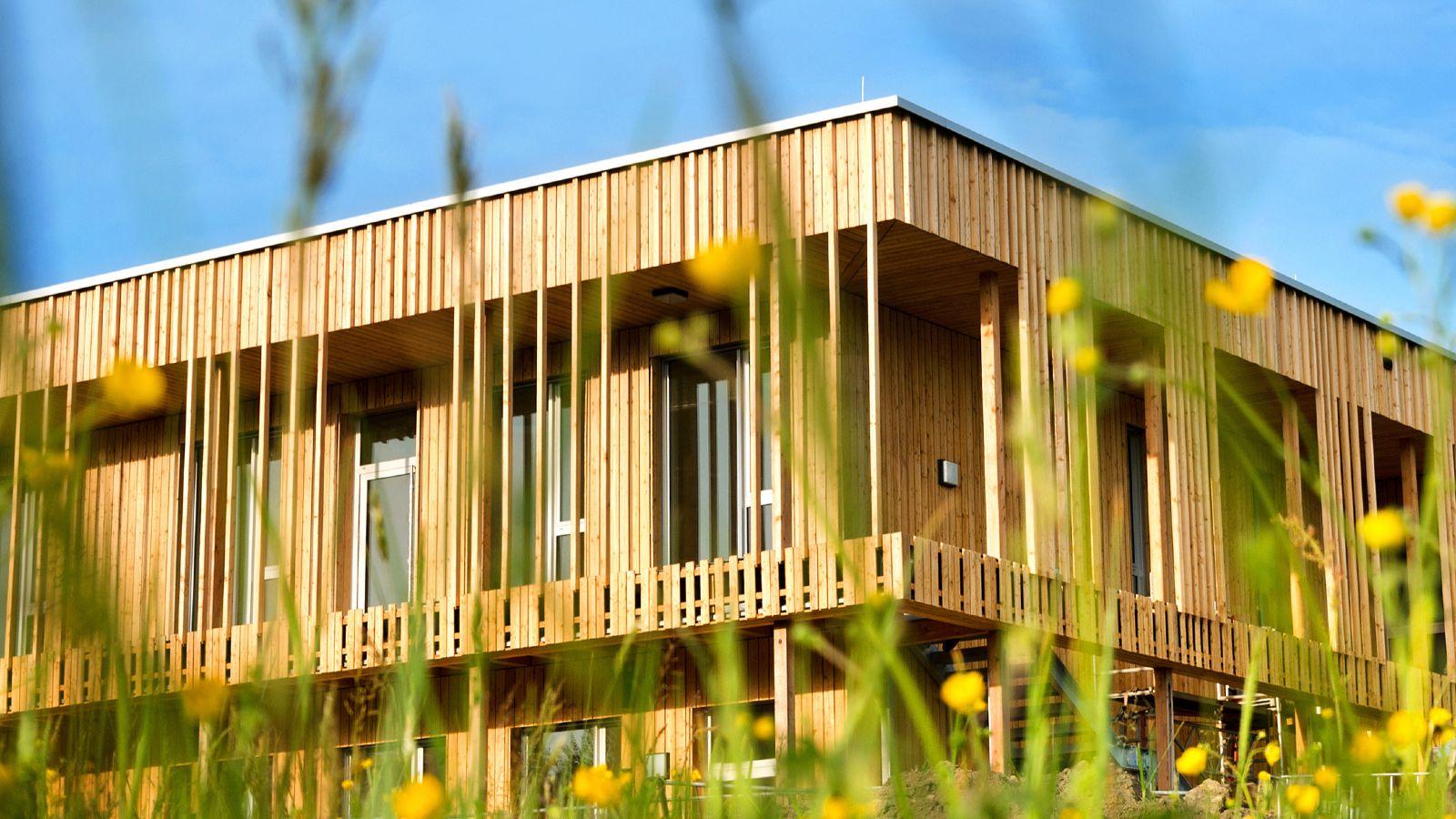 Hinter einer verschwommenen Blumenwiese steht ein Holzhaus.