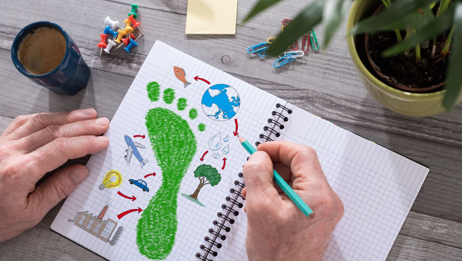 A person holding a recorded notebook and a pen on a desk with various writing utensils. On the side of the notebook there are drawings related to the bioeconomy and the environment, e.g. a green footprint.
